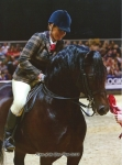 Horse of the Year Show 2015
